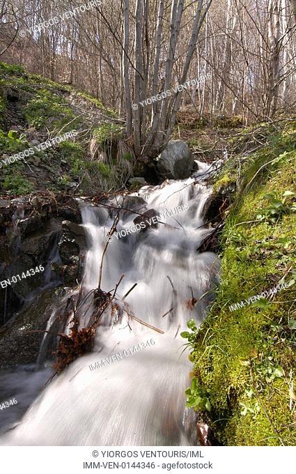 Stream located in Pella. Pella, Vergina, Macedonia, Greece, Europe