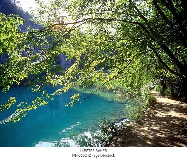 Croatia - Beautiful lake scene in Plitvice National Park