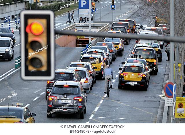 Traffic light, cyclist, cars and taxis. Barcelona. Catalonia. Spain