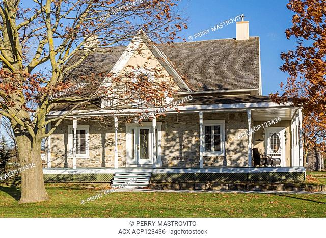 Old 1820 cottage style fieldstone house facade with beige wood plank cladding and white trim plus oak tree in autumn, Quebec, Canada