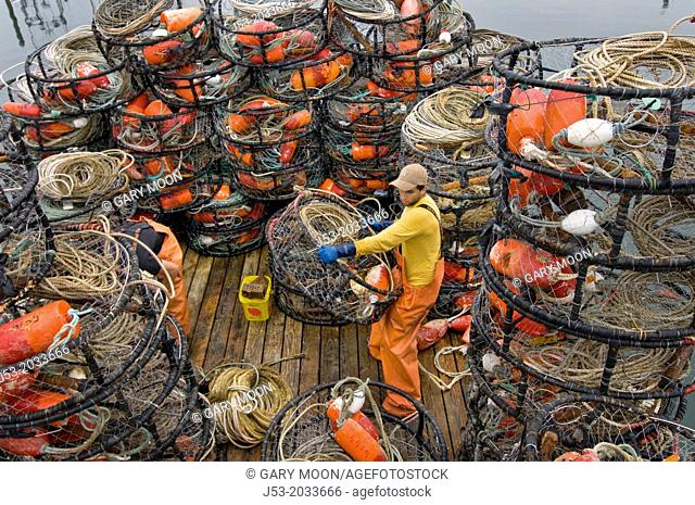 Young man on deck of commercial fishing boat preparing crab pots for next trip, Westport, Washington USA