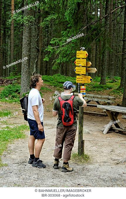Hiking trails in the South Bohemian Forest Sumava Czech Republik