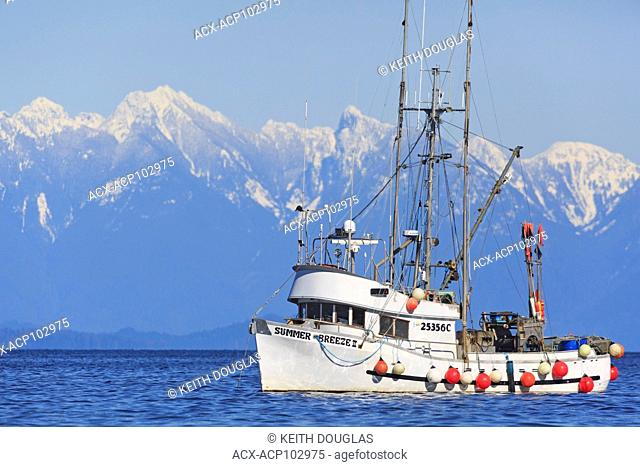 Boat anchored during herring fishery near Nanaimo, Vancouver Island, British Columbia