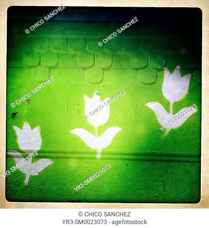 Graffiti of three flowers decorate a green wall in El Bosque, Sierra de Cadiz, Andalusia, Spain