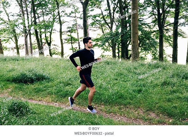 Man running on forest track