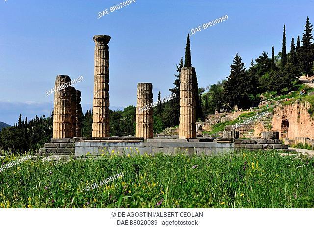 The Doric columns of the Temple of Apollo, archaeological site of Delphi (UNESCO World Heritage Site, 1987), Greece. Ancient Greek civilization, 4th century BC