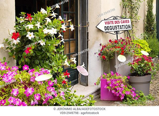 Clos des Menuts, Saint Emilion Grand Cru Wine cellar. Bordeaux wine region. Aquitaine Region, Gironde Department. France Europe