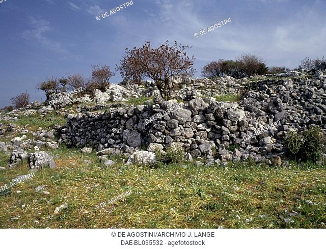 Stone walls and olive trees, Axos, Crete, Greece
