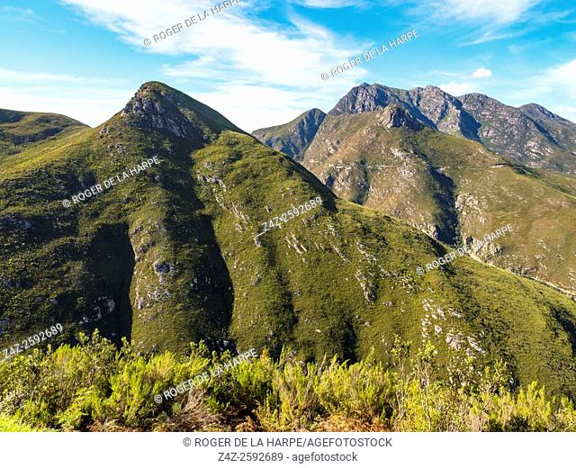 Oteniqua Mountains. George. Garden Route. Western Cape. South Africa
