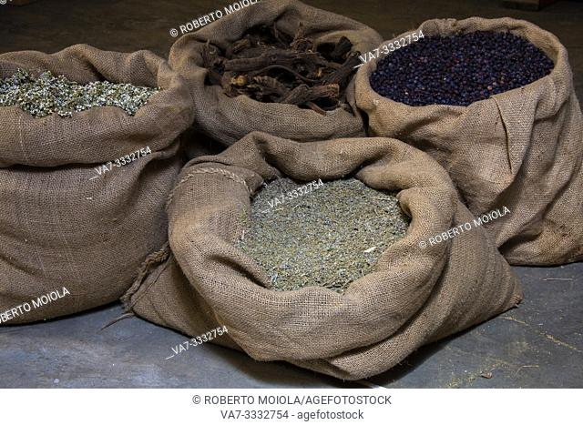 Alpine herbs in burlap sack, ingredients of recipe of liquor Amaro Braulio, Bormio, Sondrio, Valtellina, Lombardy, Italy
