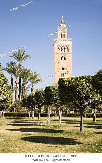 Marrakech Morocco North Africa  View of Koutoubia Mosque minaret through line of trees in orange grove gardens