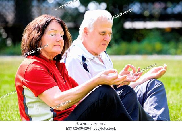Elderly Senior Couple Doing Yoga In Garden
