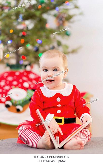 Portrait of a toddler reading a book in her festive Christmas outfit in front of the Christmas tree; Langford, British Columbia, Canada