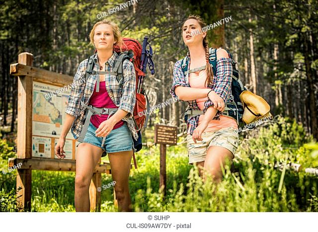 Young woman and teenage girl hiker hiking in forest, Red Lodge, Montana, USA