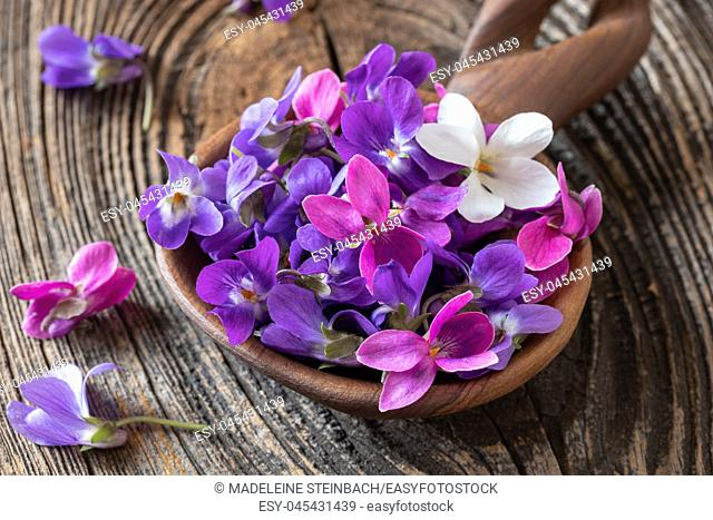 Wood violet flowers on a wooden spoon