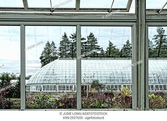 Bronx, NY, USA. Looking at a Greenhouse through the Window of a Greenhouse Across the Way. New York Botanical Garden