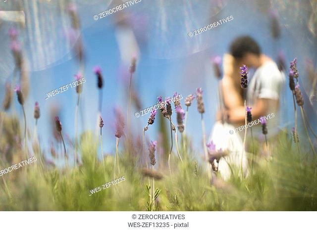 Romantic couple in lavender field