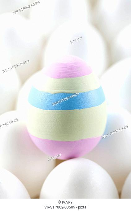 One colored Easter egg amongst white ones on egg