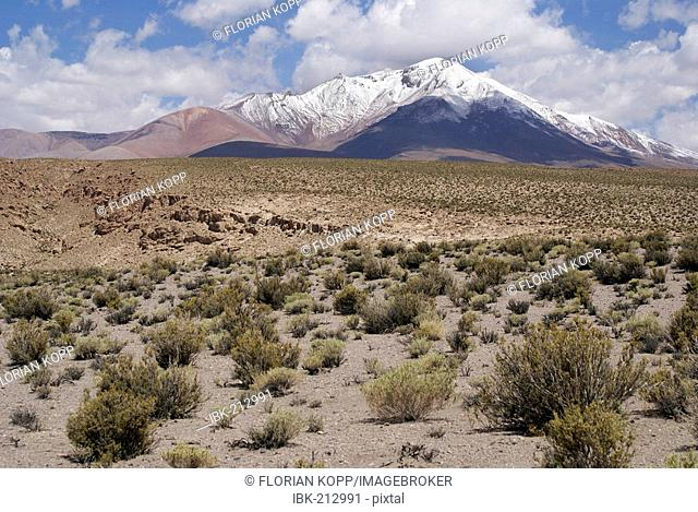 Landscape with Vulcano in the Uyuni Highlands, Bolivia