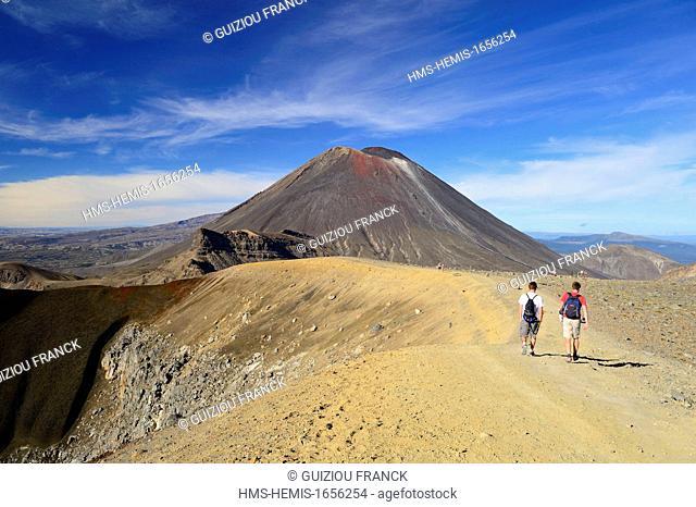 New Zealand, North Island, Tongariro National Park is the first national park in New Zealand and the fourth to emerge globally (UNESCO World Heritage) ; Mount...
