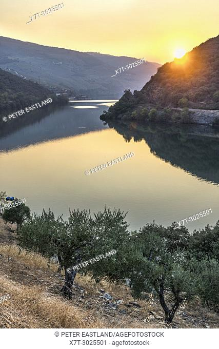 The River Douro at sunset between Folgosa and Pinhao. In the Alto Douro wine region, Northern Portugal