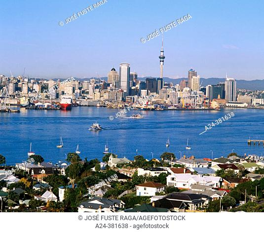 Auckland. North Island, New Zealand