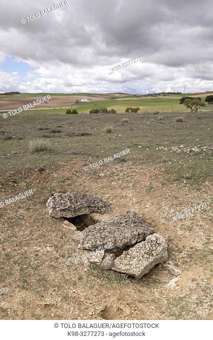 necrópolis, parque arqueológico de Segóbriga, Saelices, Cuenca, Castilla-La Mancha, Spain