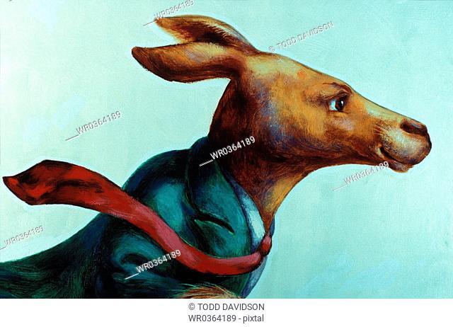 kangaroo businessman