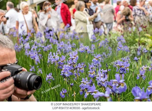 The RHS Chelsea Flower Show held in the grounds of the Royal Hospital Chelsea in London
