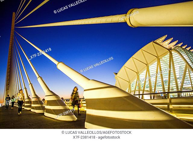 El Pont de l'Assut de l'Or and Museu de les Ciencies Principe Felipe, in City of Arts and Sciences. Valencia, Spain