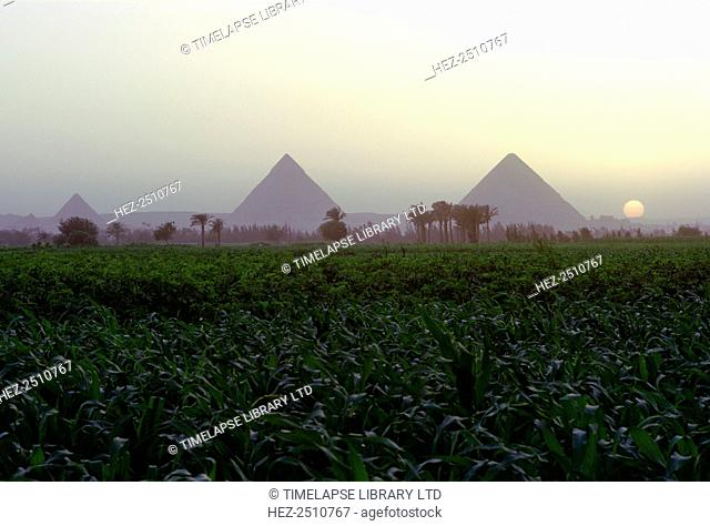 Pyramids of Giza at sunset, Egypt. The Pyramid of Cheops is the only surviving one of the Seven Wonders of the Ancient World