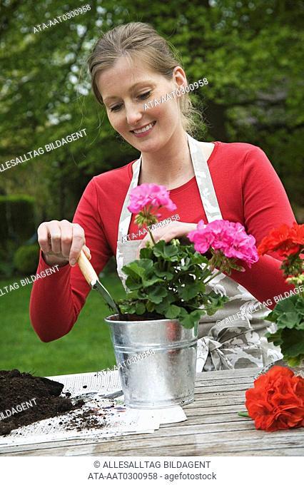 Young woman implanting geranium