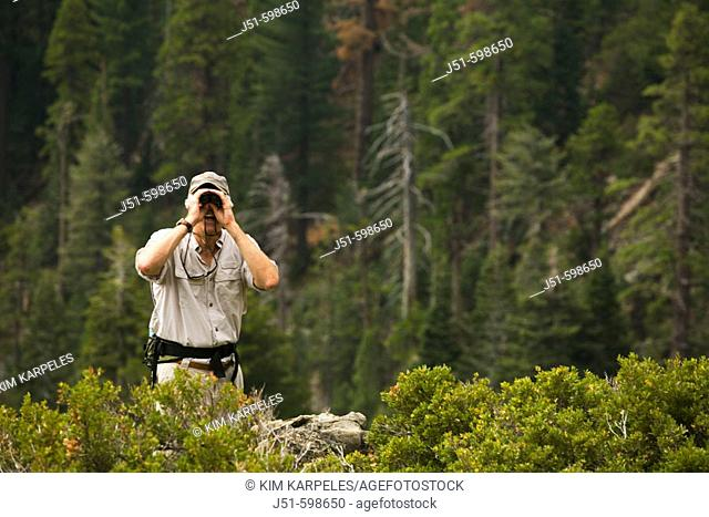 CALIFORNIA   South Lake Tahoe   Male day hiker use binoculars from overlook point