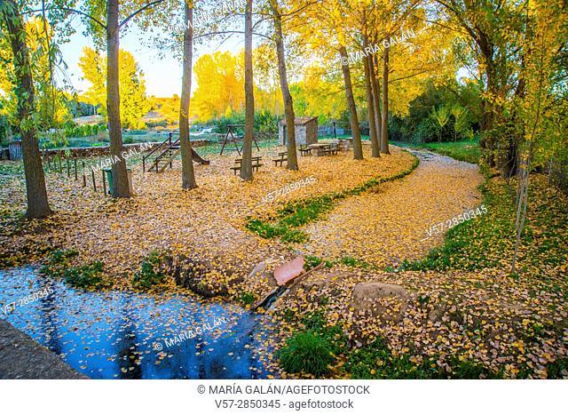 Park in Autumn. Castillejo de Mesleon, Segovia province, Castilla Leon, Spain