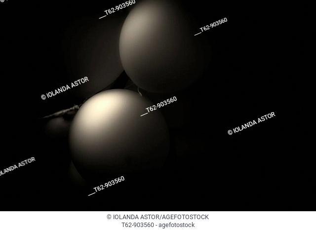 Balloons  Monochrome