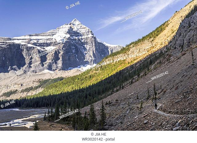 Hiking in the Mount Robson Provincial Park, UNESCO World Heritage Site, with a view of the Whitehorn Mountain, Canadian Rockies, British Columbia, Canada