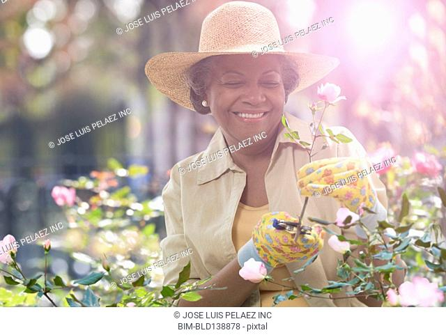 Older African American woman trimming flowers in garden