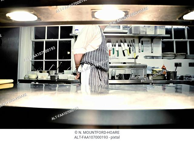 Chef standing in commercial kitchen