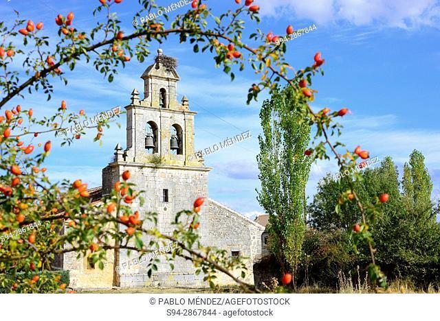 Church of Santo Tomás Apostol in Bercimuel, Segovia, Spain