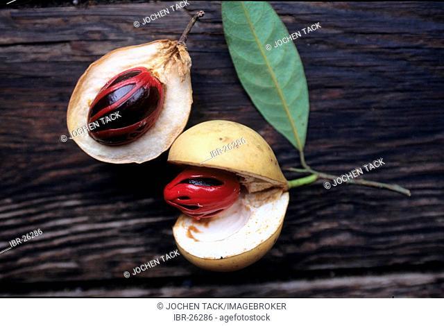 GRD, Grenada: nutmeg apples. Grenada is the scond largest producer of nutmeg in the world