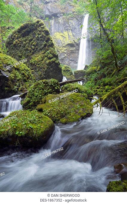 Elowah Falls, Columbia River Gorge, Oregon, USA