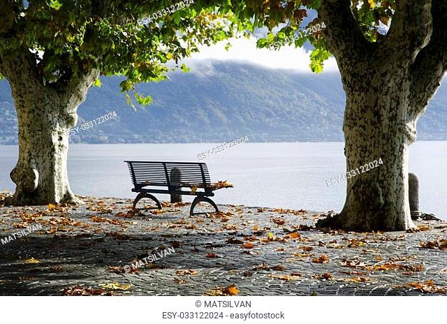 Bench and trees in autumn on a lakefront with mountain