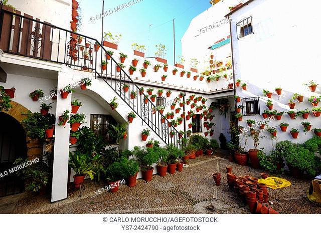 Patio of private house, Cordoba, Andalucia, Spain, Europe