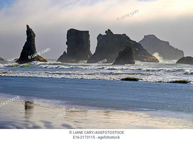 coast of Bandon Beach