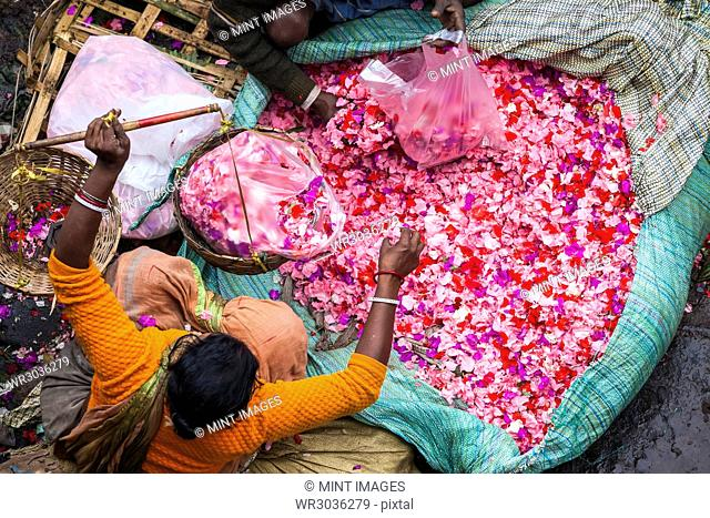 High angle view of vendor selling pink flower petals at a street market