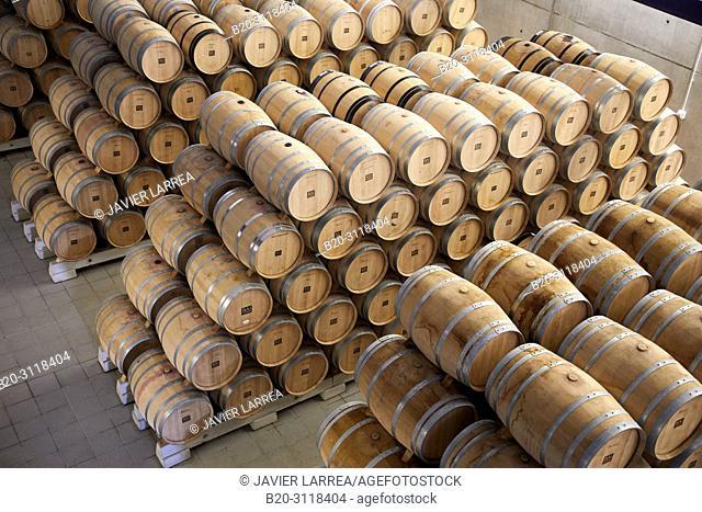 Wine barrel cellar, Bodegas Baigorri, Samaniego, Rioja Alavesa, Araba, Basque Country, Spain, Europe
