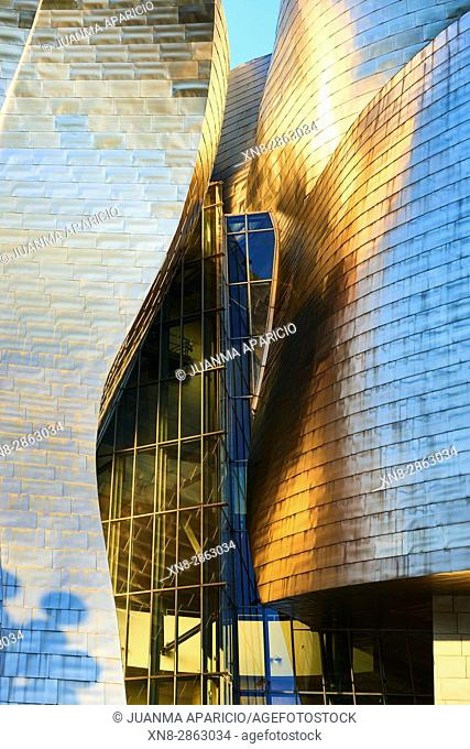 Detail of the Guggenheim Museum Facade Bilbao, Biscay, Basque Country, Spain, Europe