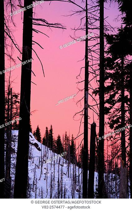 Santiam Pass sunrise through Booth Fire, Willamette National Forest, Oregon