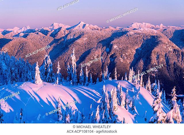 Mount Seymour Provincial Park, North Vancouver, British Columbia, Canada