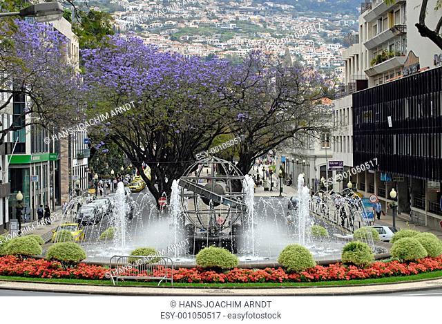 Weltkugel-Monumant,Praco do Infante, blühende Jacarandabäume, Funchal